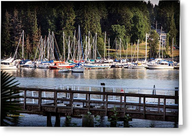 North Vancouver Greeting Cards - Summer in Deep Cove Greeting Card by Tom Buchanan
