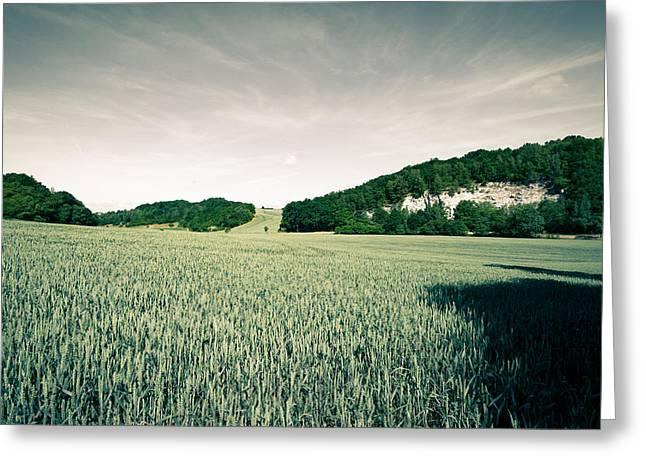 Deutschland Greeting Cards - summer in Ruedigsdorf Greeting Card by Andreas Levi