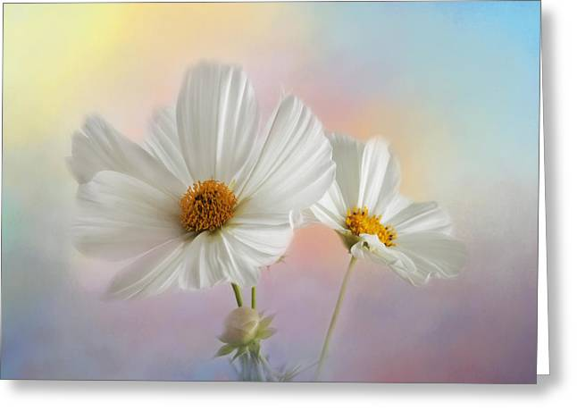 Kim Photographs Greeting Cards - Summer in the Garden Greeting Card by Kim Hojnacki