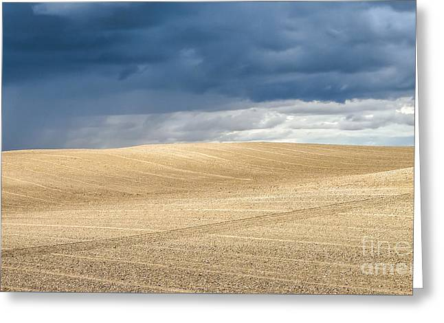 Field. Cloud Greeting Cards - Summer landscape with dramatic thunderclouds in the background Greeting Card by JR Photography