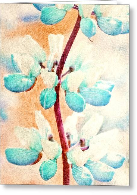 Abstract Digital Paintings Greeting Cards - Summer Lupine Greeting Card by Bonnie Bruno