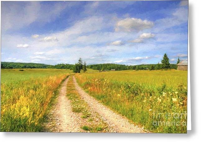 Salo Greeting Cards - Summer Meadows Greeting Card by Veikko Suikkanen