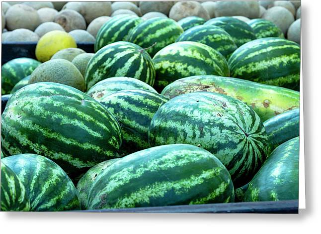 Summer Melons Greeting Card by Teri Virbickis