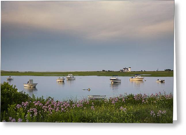 Chatham Greeting Cards - Summer morning on the Oyster River on Cape Cod Greeting Card by Betty Wiley