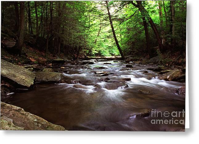 Fishing Creek Greeting Cards - Summer on Big Hunting Creek Greeting Card by Thomas R Fletcher
