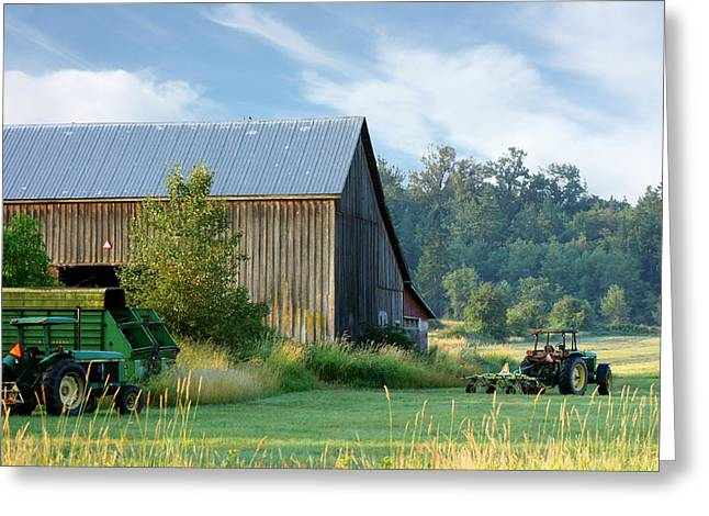 Rural Landscapes Greeting Cards - Summer on the Farm Greeting Card by Barbara  White