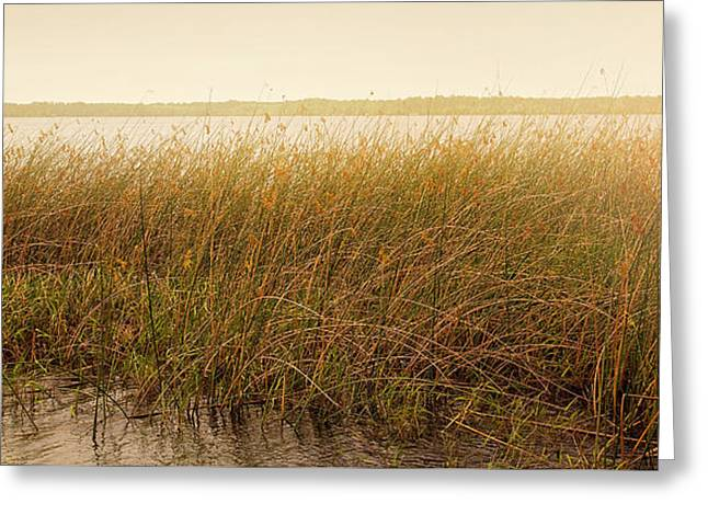 Gulf Front Pool Photographs Greeting Cards - Summer On The Marsh Greeting Card by Sally Simon