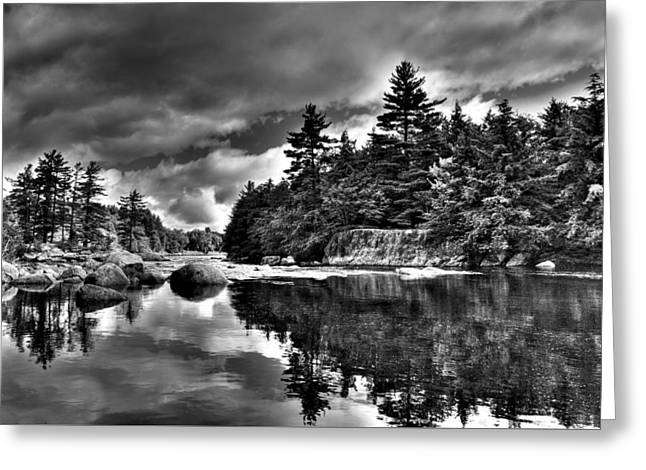White River Greeting Cards - Summer Reflections on the Moose River Greeting Card by David Patterson