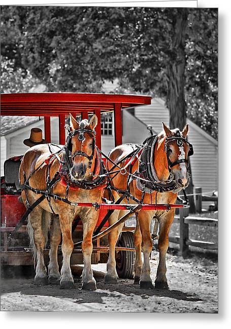 Carriage Greeting Cards - Summer Ride Greeting Card by Evelina Kremsdorf