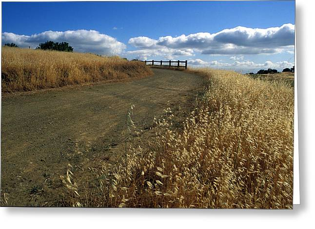 Field. Cloud Greeting Cards - Summer Road Greeting Card by Kathy Yates