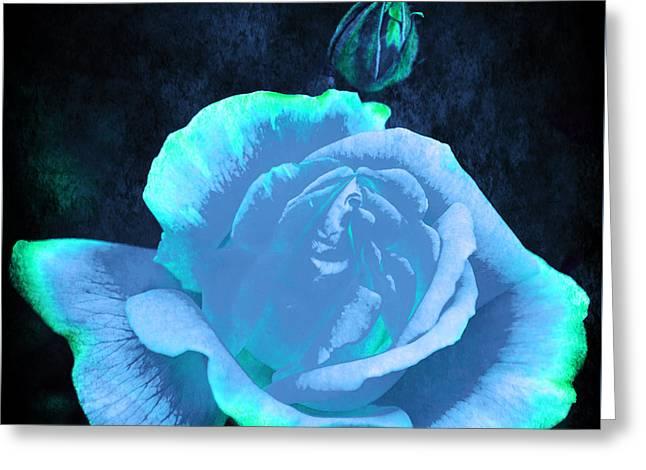 Rose Petals Greeting Cards - Summer Rose 3 v4 Greeting Card by Alex Art