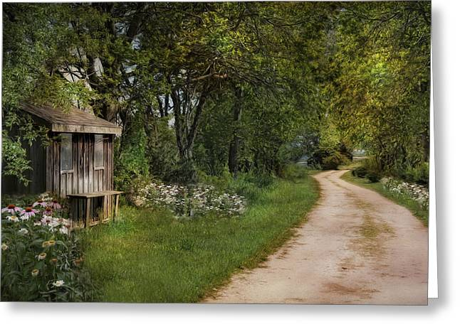 Sheds Greeting Cards - Summer St. Greeting Card by Robin-lee Vieira