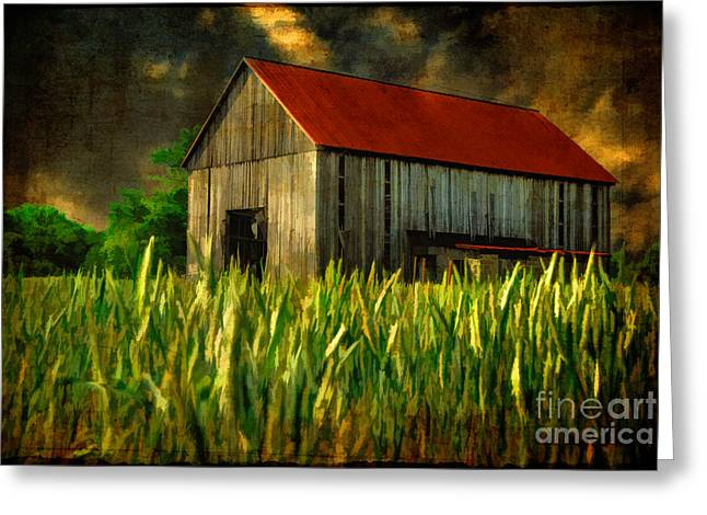 Red Roofed Barn Greeting Cards - Summer Storm Greeting Card by Lois Bryan