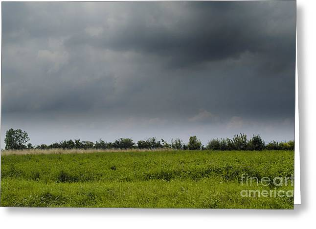 Michelle Greeting Cards - Summer storm Greeting Card by Michelle Meenawong