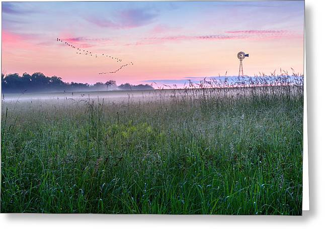 Summer Sunrise 2015 Greeting Card by Bill Wakeley