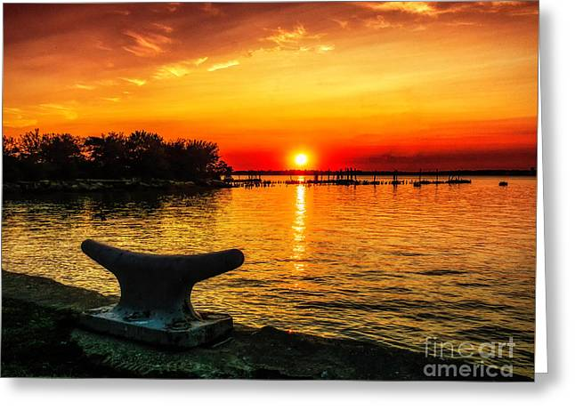 Summer Sunset At The Riverview Greeting Card by Nick Zelinsky