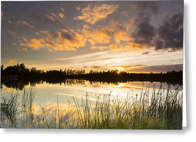 Trees Reflecting In Water Greeting Cards - Summer Sunset Over Six Mile Lake Greeting Card by Michael DeYoung