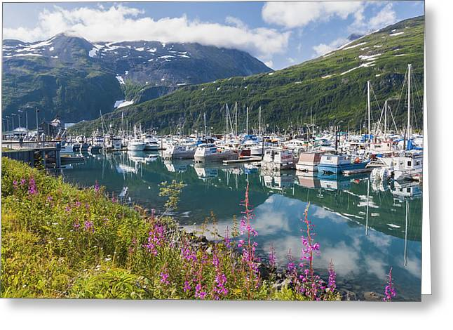 Boats In Reflecting Water Photographs Greeting Cards - Summer View Of Whittier Boat Harbor Greeting Card by Michael DeYoung
