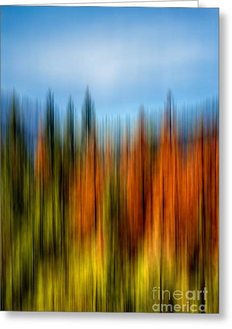 Abstract Nature Art Greeting Cards - Summers Coming Greeting Card by Az Jackson