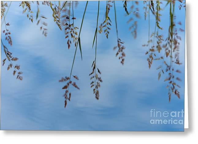 Spokane Greeting Cards - Summers Reflection Greeting Card by Reflective Moment Photography And Digital Art Images