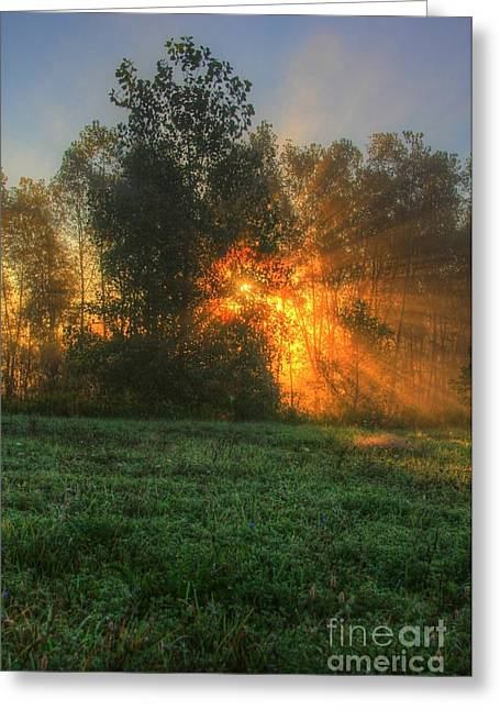 Pearson Greeting Cards - Sun Beams-6 Greeting Card by Robert Pearson