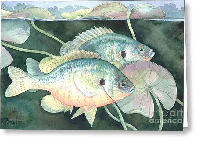 Fish Pond Greeting Cards - Sun Fish Greeting Card by Paul Brent
