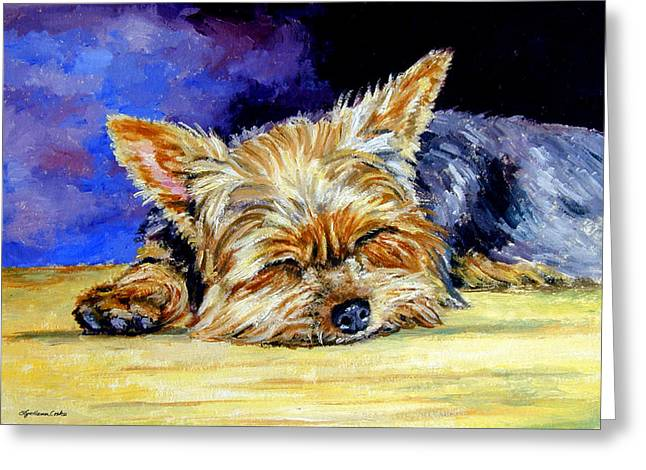 Portraits Oil Greeting Cards - Sun Light Snoozer - Yorkshire Terrier Greeting Card by Lyn Cook