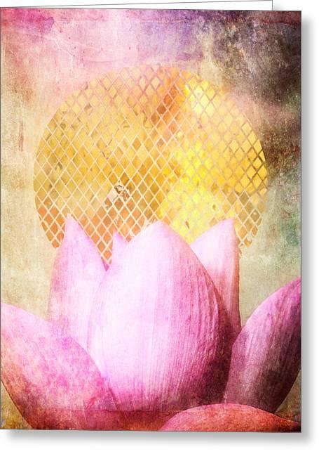 Fuschia Greeting Cards - Sun Lotus Greeting Card by Aimee Stewart