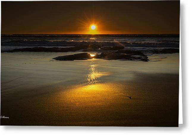 Pin Cushion Greeting Cards - Sun Reflection Greeting Card by Andrew Dickman