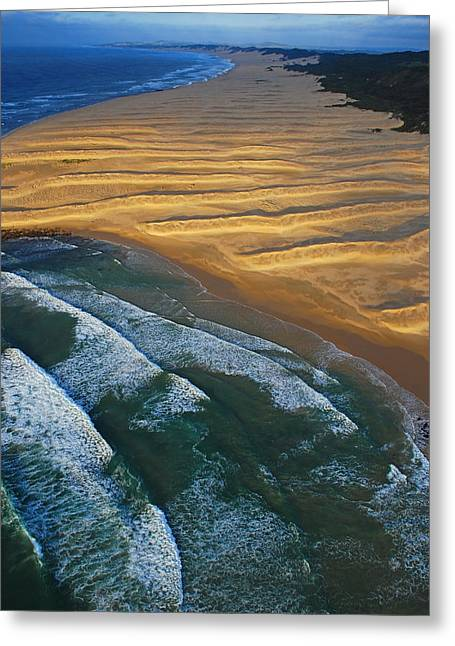 Sun Rise Coast  Greeting Card by Skip Hunt