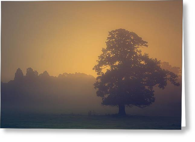 Haze Photographs Greeting Cards - Sun rising Greeting Card by Chris Fletcher