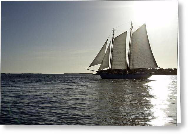 Ocean Sailing Greeting Cards - Sunset Ship Greeting Card by Amy Culp