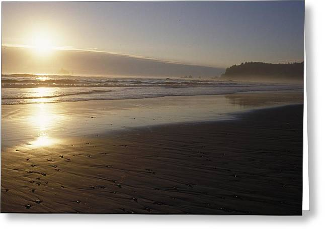 Ocean Beach Photos Greeting Cards - Sun Setting On Shoreline Greeting Card by Ink and Main