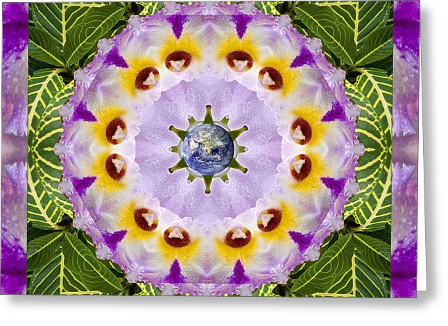 Mandala Photographs Greeting Cards - Sun Shower Greeting Card by Bell And Todd