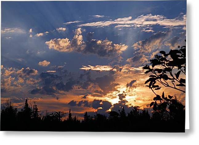 Sunbeams At Sunset Greeting Card by Larry Ricker