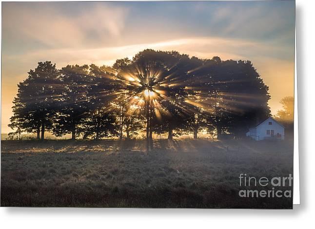 Sunbeams Greeting Card by Benjamin Williamson