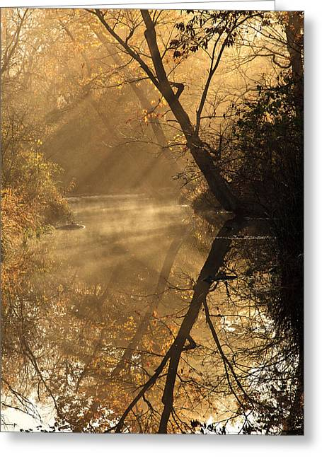Mystical Landscape Greeting Cards - Sunburst in the Forest Greeting Card by Iris Greenwell