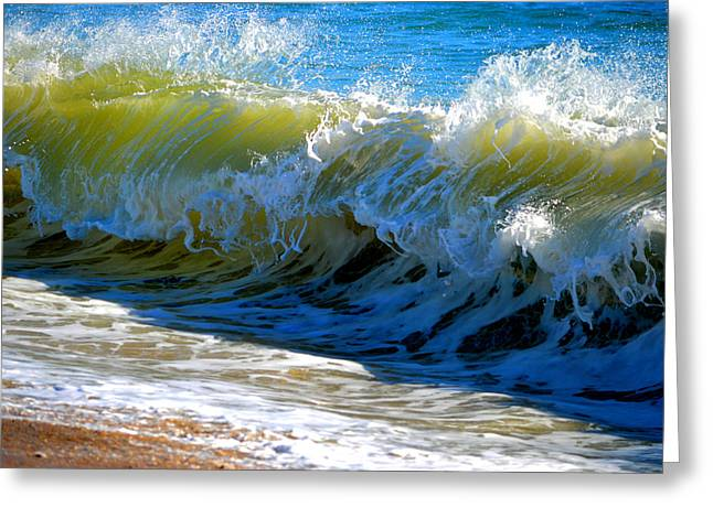 New England Ocean Greeting Cards - Sundance Greeting Card by Dianne Cowen
