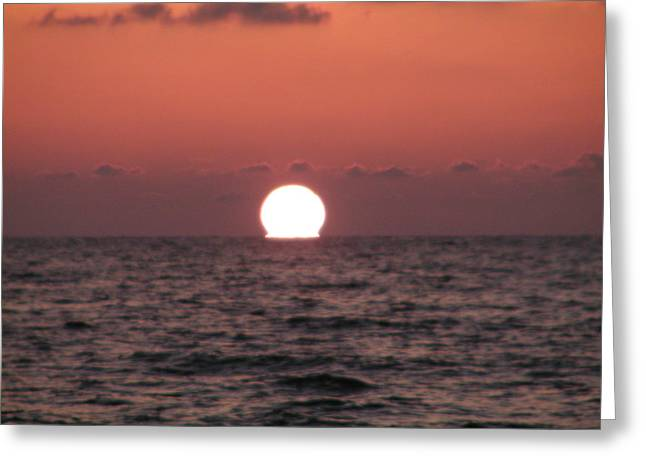 St Petersburg Florida Greeting Cards - Sundown at Dunedin Greeting Card by Bill Cannon