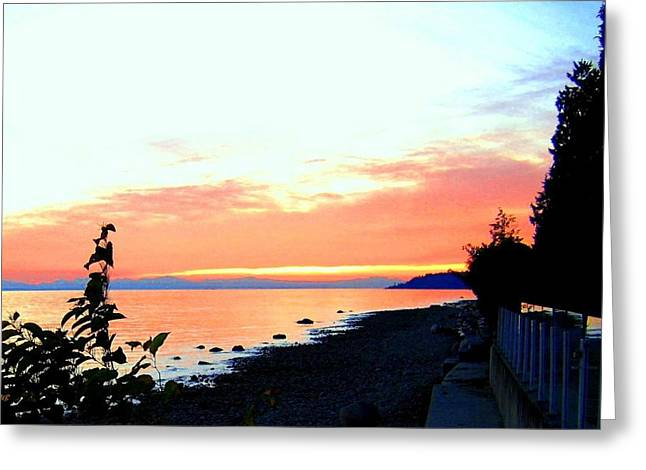 West Vancouver Greeting Cards - Sundown From West Vancouver Greeting Card by Will Borden