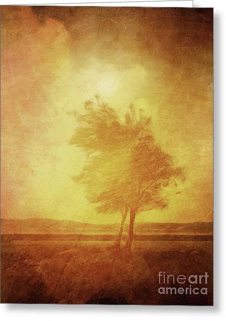 Vintage Landscape Greeting Cards - Sundown Landscape Greeting Card by Lutz Baar