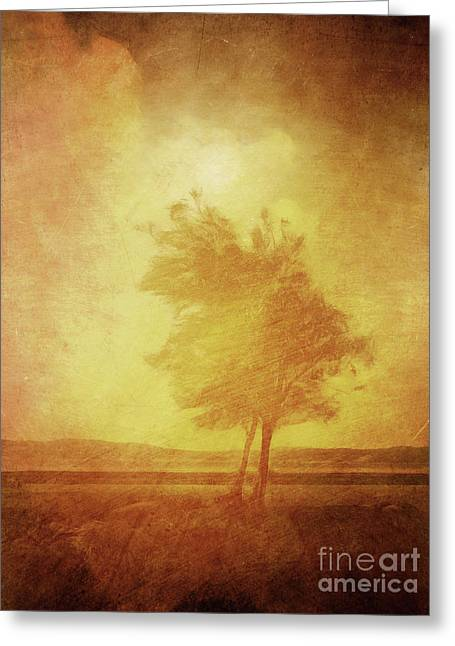 Sundown Greeting Cards - Sundown Landscape Greeting Card by Lutz Baar
