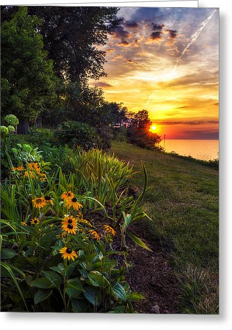 Beauty Mark Greeting Cards - Sundown Greeting Card by Mark Papke