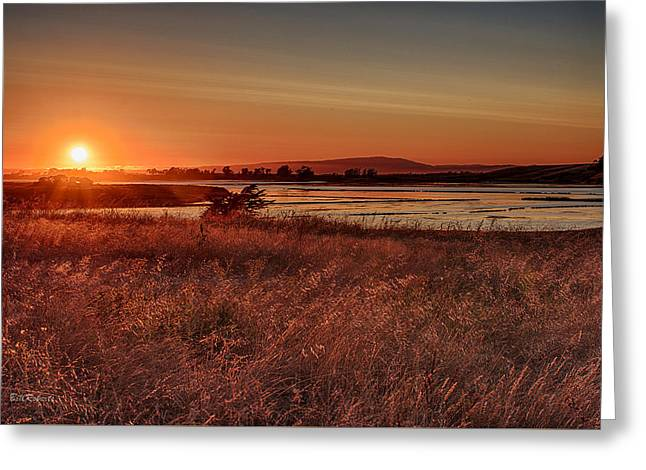 Sloughs Greeting Cards - Sundown On Elkhorn Slough Greeting Card by Bill Roberts