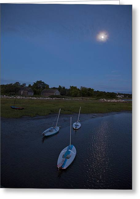 Sunfish Greeting Cards - Sunfishes in Moonlight Greeting Card by Charles Harden