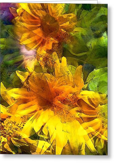 Pamela Cooper Greeting Cards - Sunflower 6 Greeting Card by Pamela Cooper