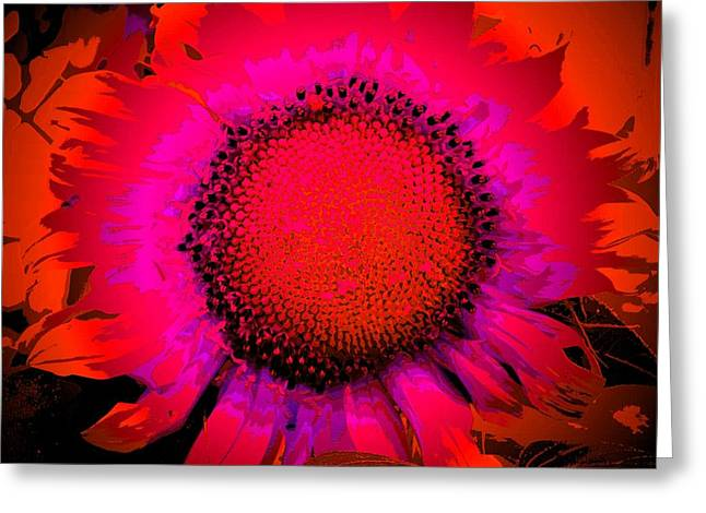 Shades Of Red Greeting Cards - Sunflower Art #93 Greeting Card by Ninie AG