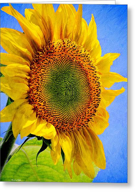 Sunflower Joy Greeting Cards - Sunflower - Good Morning Sunshine Greeting Card by Christina Rollo