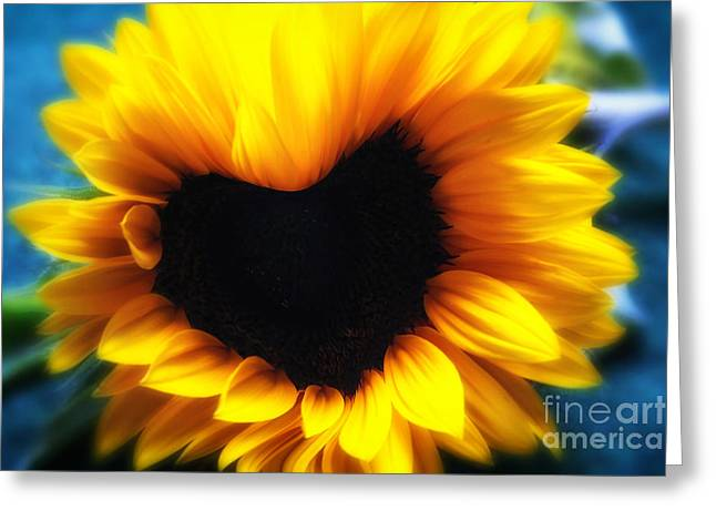 Fragrant Greeting Cards - Sunflower heart Greeting Card by SK Pfphotography