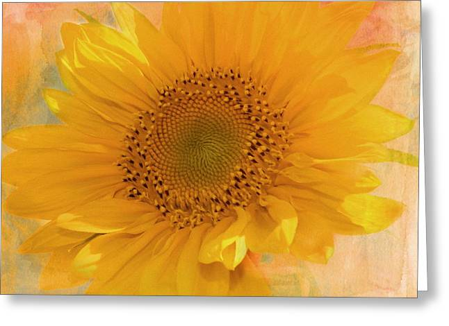 Texture Floral Mixed Media Greeting Cards - Sunflower Kisses Greeting Card by Georgiana Romanovna